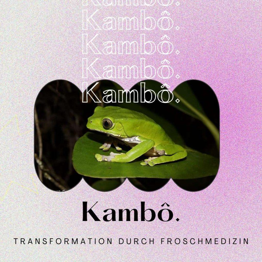 Read more about the article Kambô-Zeremonie: Der ultimative Kambô-Guide – Meine Erfahrung mit der Froschmedizin